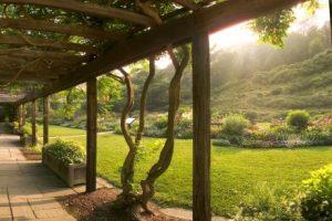 نتيجة بحث الصور عن cornell garden